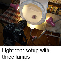 Light tent setup with three lamps
