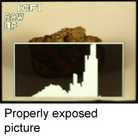 Histogram of properly exposed picture